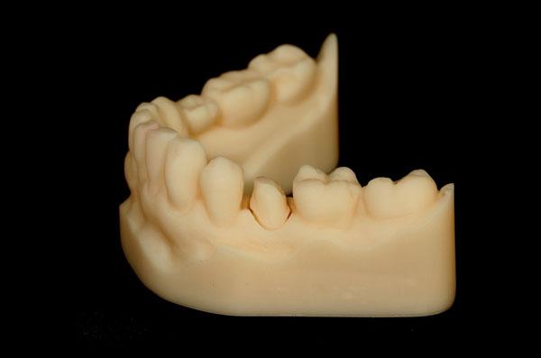 In-house 3D printed models